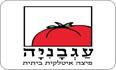 לוגו פיצה עגבניה יבנה